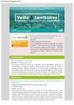 thumbnail of Veille_Territoires – En quelques clics 225 ext