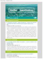 thumbnail of Veille_Territoires – En quelques clics 228 ext
