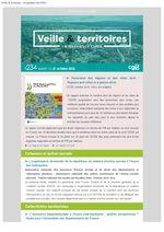thumbnail of Veille_Territoires – En quelques clics 234 ext