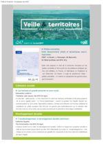 thumbnail of Veille_Territoires – En quelques clics 247