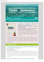 thumbnail of Veille_Territoires – En quelques clics 252 ext