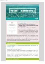 thumbnail of Veille_Territoires – En quelques clics 255 ext