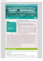 thumbnail of Veille_Territoires – En quelques clics 256 ext