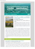thumbnail of Veille_Territoires – En quelques clics 259 ext