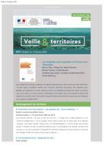 thumbnail of Veille_Territoires – En quelques clics 261 ext