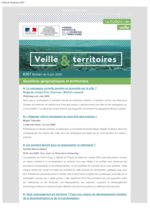 thumbnail of Veille et Territoires 267 externe
