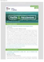 thumbnail of Veille_Territoires – 273_ext