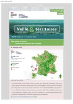thumbnail of Veille_Territoires – 276_ext